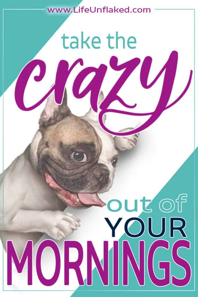 "crazy looking dog | text ""take the crazy out of your mornings"""